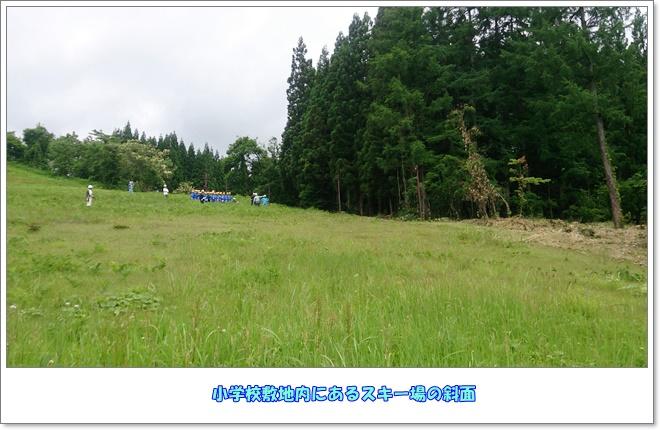 DSC_1166